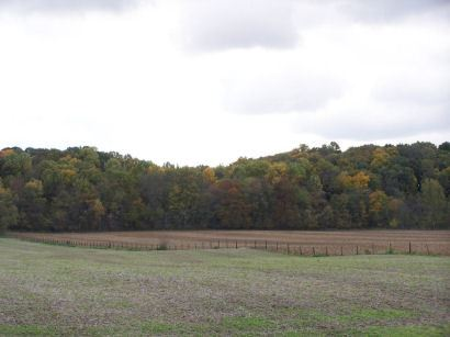 Field in Miami County